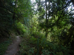 Lime Kiln Trail